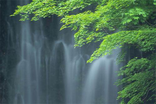 サンプル写真:滝と緑